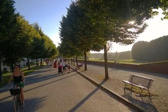 Ein wahrer Läufertraum: Die alte Stadtmauer rund um die toskanische Stadt Lucca